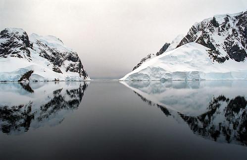 antarctica c41