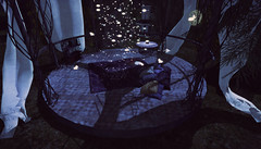 Midnight Retreat