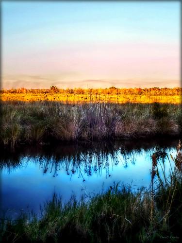 floridawildernessaglow lakewoodruffnationalwildliferefuge deleonspringsflorida wetlands nature scenic landscape reflections sunlight sunset pastelsky canal water
