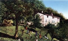 Environs d'Orgelet (Jura) - Le château de Plaisia