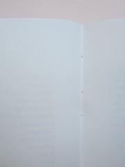 Ortografia della neve, di Francesco Balsamo. incertieditori 2010. Progetto grafico di officina delle immagini. Legatura (part.), 1
