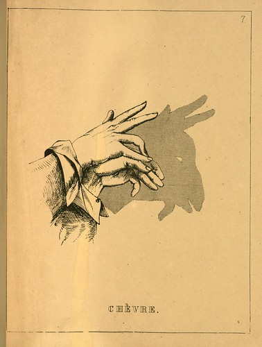 006- La cabra-Ombromanie. Premièr série-1860- The Art Walters Museum