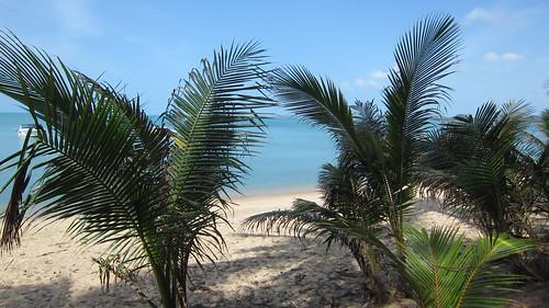 Koh Samui Maenam Beach サムイ島
