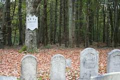 Heal cemetery 1
