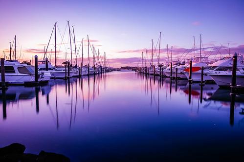 newzealand auckland