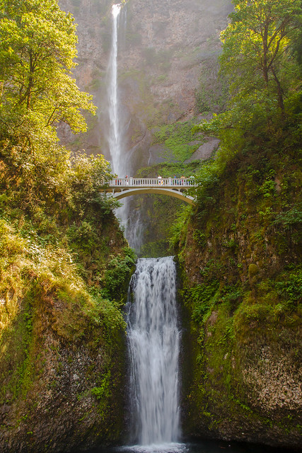 Multnomah Falls in the Columbia River Gorge by CC user pavdw on Flickr