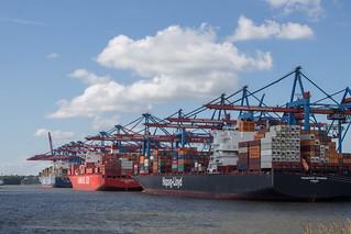 Containerterminals im Waltershofener Hafen