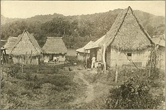 """Image from page 313 of """"Panama and the canal in picture and prose .."""" (1913)"""