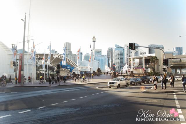 Sydney (35 of 129)