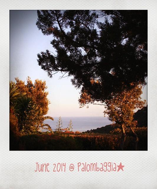 2014_07_13_Palombaggia_Pola