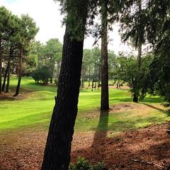 Petit tour au golf #Lacanau