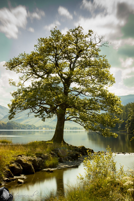 Five of the Best Walks in the Lake District