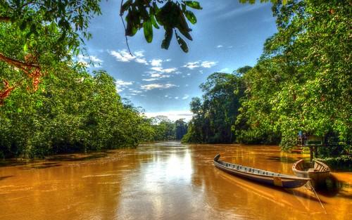 ecuador amazon rainforest hdr yasuni yasuninationalpark riotiputini andreaskay