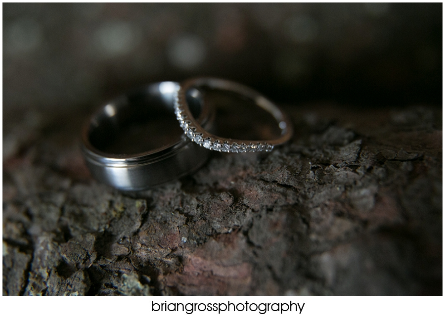 Brandi_Will_Preview_BrianGrossPhotography-113