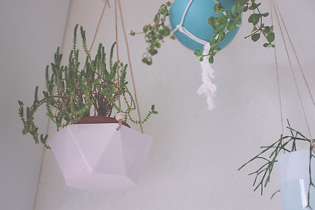 diy transformer un bol en suspension pour plante planb. Black Bedroom Furniture Sets. Home Design Ideas