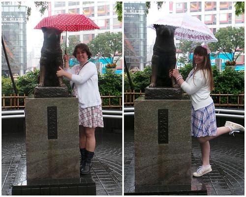 Hachi in the Rain