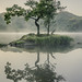 The Tree at Rydal Water by .Brian Kerr Photography.