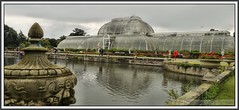 P1260190 Kew Gardens Palm House..