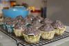 glazed chocolate doughnut muffins