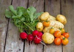 4554 Vegetables