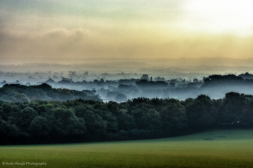 morning trees england mist sunrise landscape unitedkingdom sony wallingford a77 sonyalpha andyhough slta77 andyhoughphotography