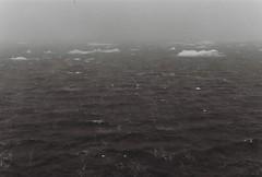 Antarctica Lost Film (5)
