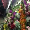 Flowers on 1 Avenue.