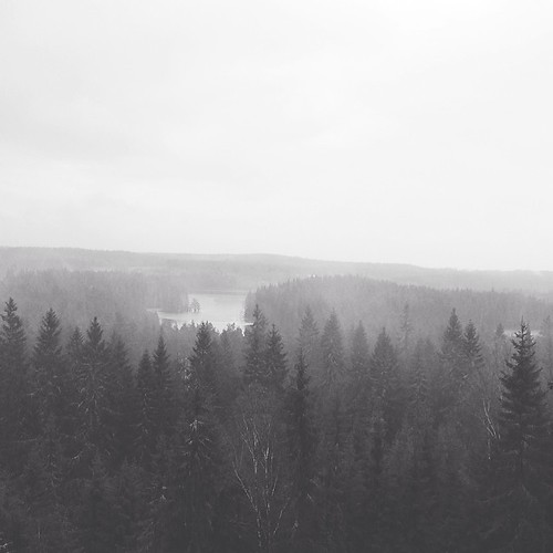 sweden skitrip uploaded:by=flickstagram instagram:photo=6613968561521013757975099