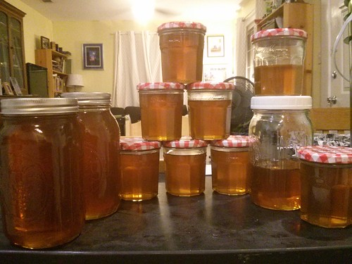 Fall 2014 honey harvest. Minus 5 jars.