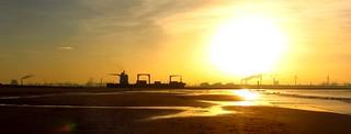 Shipping at the Maasvlakte
