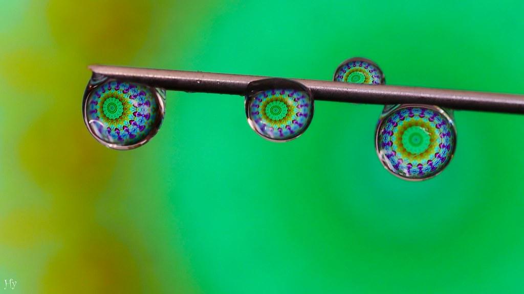 Mandala in 4 drops - #Synecdoche