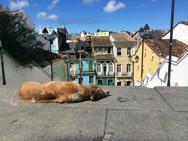Lazy day in the Pelourinho.