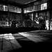 Shadows by Jeffery P.