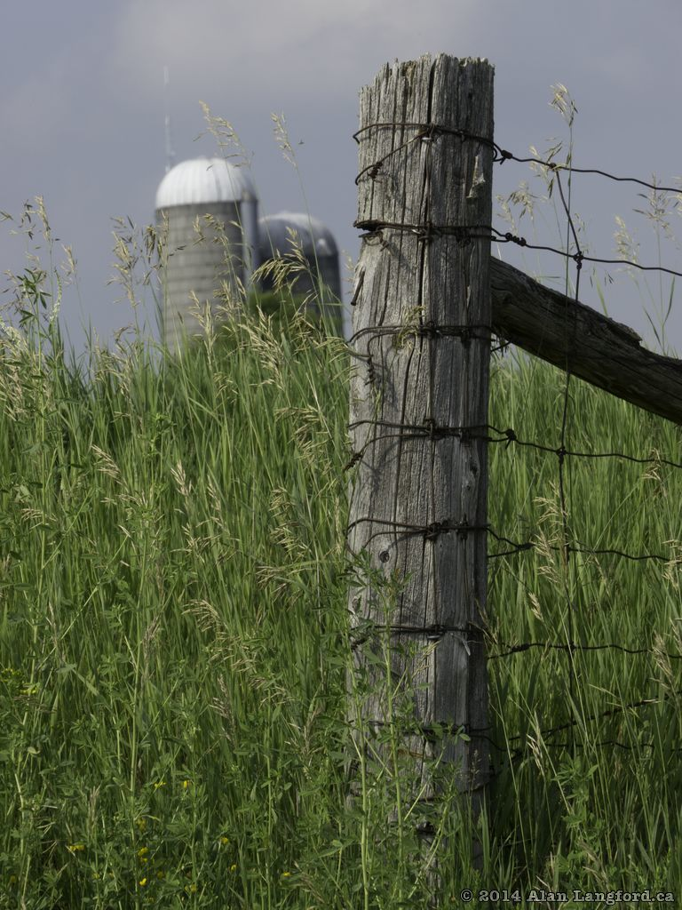 Fencepost and Silo