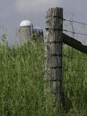 Fencepost and Silo