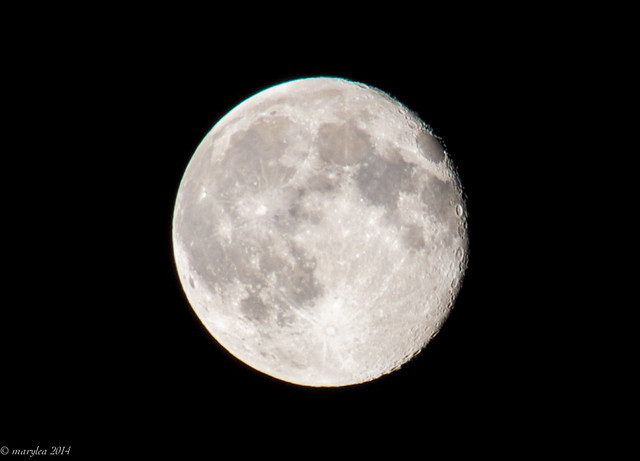 Nearly Full Moon,