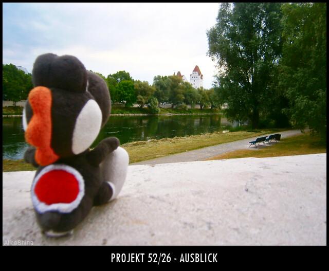 Projekt 52/26 - Ausblick