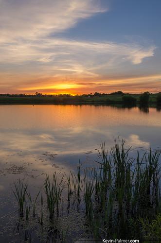sunset summer sky orange reflection water june yellow reeds gold mirror golden evening pond colorful dusk iowa cattails kevinpalmer keosauqua tamron1750mmf28 lakesugema pentaxk5