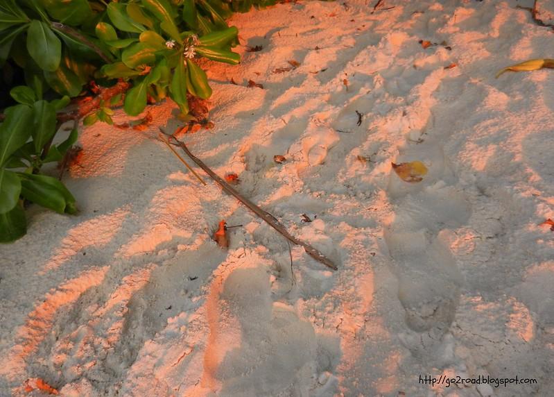 Песок на Мальдивах не нагревает солнце