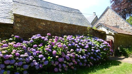 076 Ferme de Rochemont, Sauxemesnil