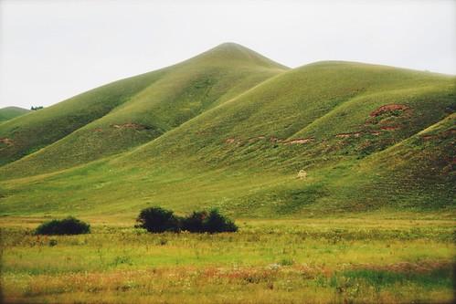 green landscape russia siberia archvar