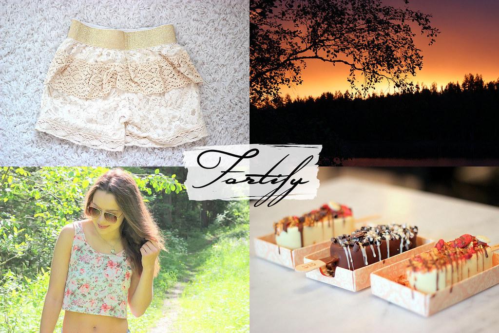 fortify blogi