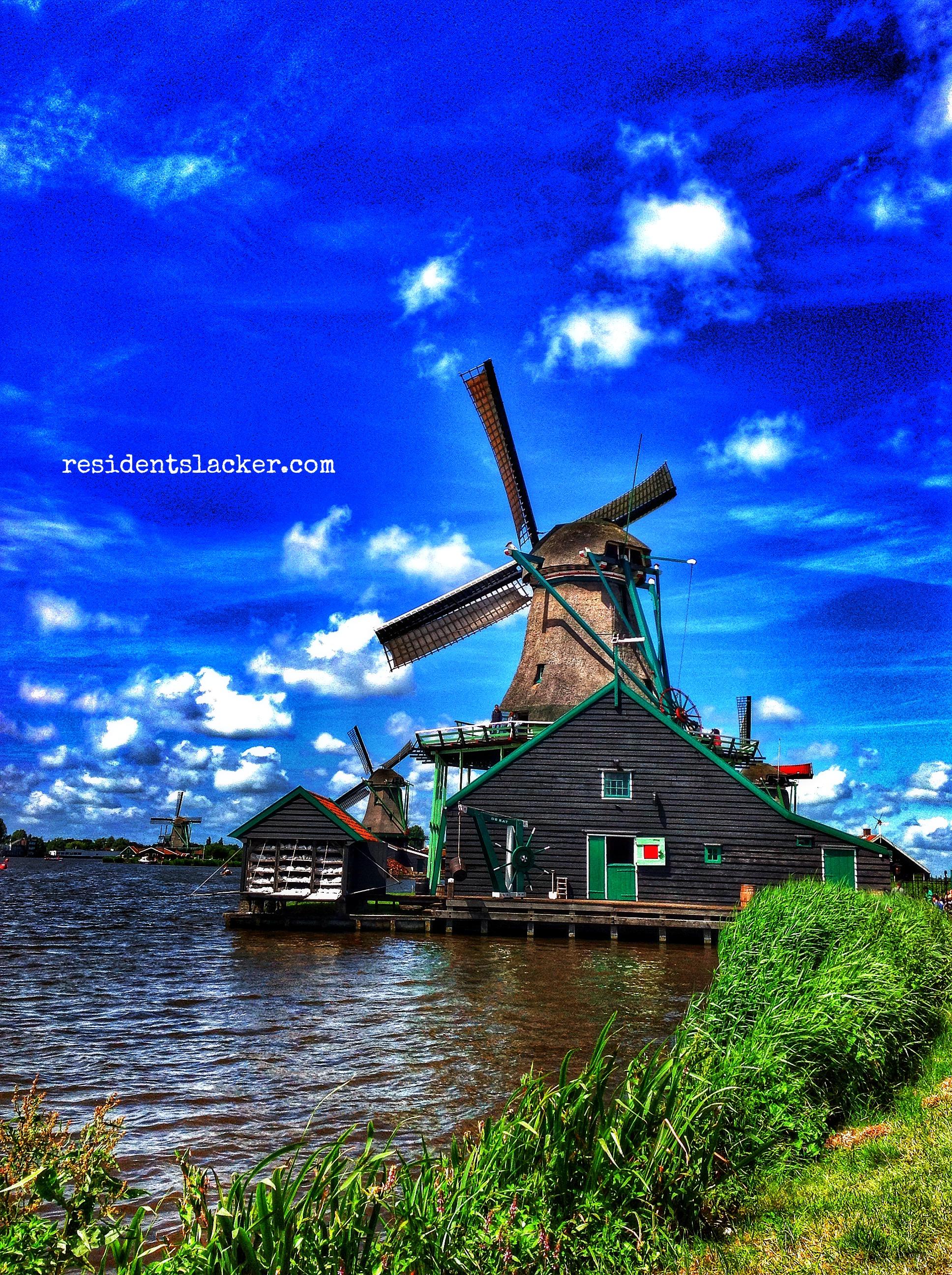 Windmills_08