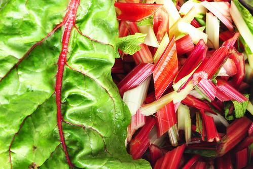 Mangold Stiel Mangoldstiele Spinat ähnlich Gänsefußgewächs Kräuter Kartoffel Bratkartoffeln Rotwein Rezept Brigitte Stolle