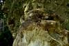 Photo:大山阿夫利神社 - 栃木県宇都宮市大谷町 By mossygajud