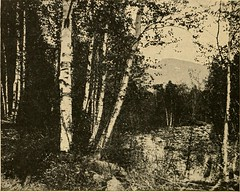 "Image from page 279 of ""New England; a human interest geographical reader"" (1917)"