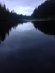 Day Thirteen: walks, canoeing and reading