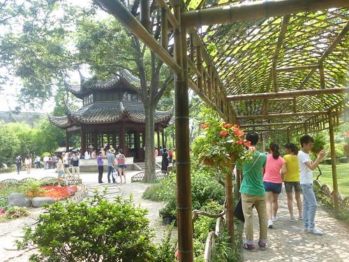 Jiangsu-Suzhou-Jardin Administrateur (4)