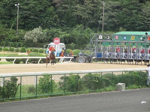 佐賀競馬場でゲートを出てしまった馬