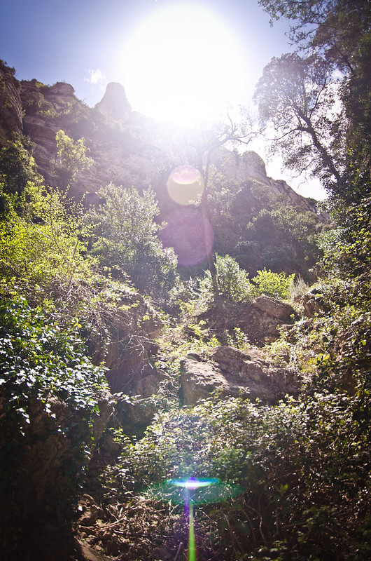 A sunny day hiking the mountains of Montserrat.